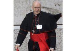 Каква Црква сака Папата?