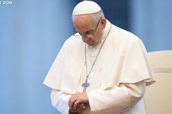 Папата: Сите имаме одговорност за зачувањето на планетата
