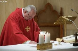 Папата: Добриот пастир Го следи Исус и никогаш не е огорчен