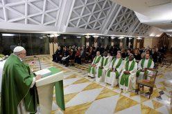 Папата: За христијанскиот живот не се потребни чудни или тешки работи