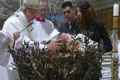 Папата: Чувајте ја верата, правете да расте и да стане сведоштво за другите