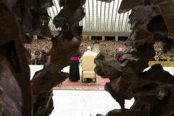 Папата: Надежта е извор на взаемна утеха и мир