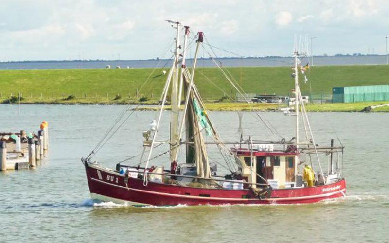 Кардинал Турксон упати порака по повод неделата на морето