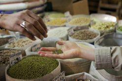 Помош на Папата за спречување на гладот во Источна Африка