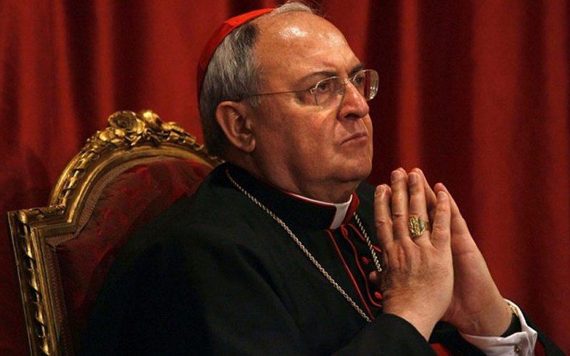 Кардинал Сандри во посета на Романија
