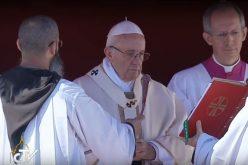 Папата најави Епископска синода за Амазонија