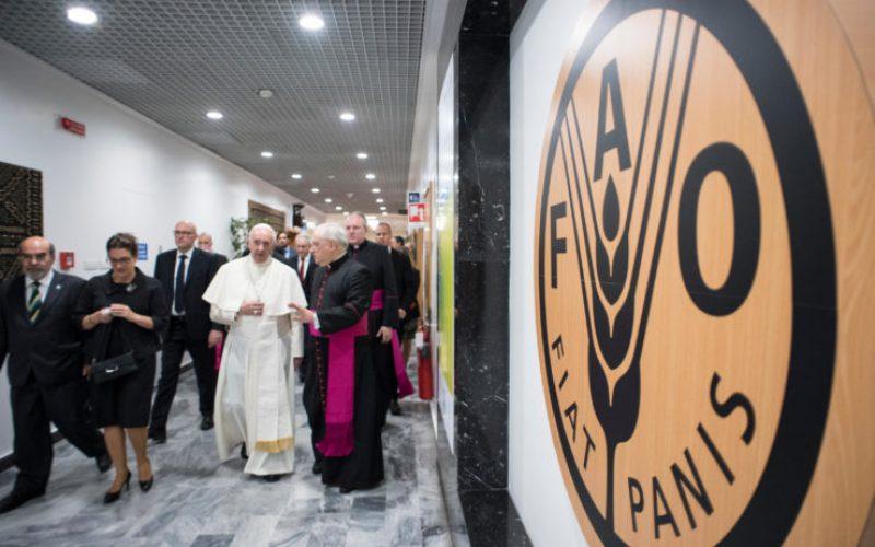 Папата: Војните и климатските промени се пречки за борбата против гладот
