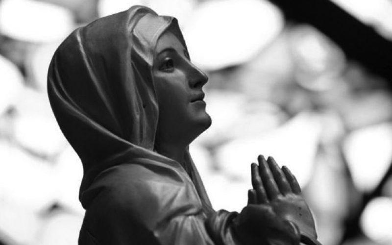 Еврозија станува Мариина девојкa