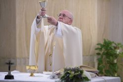 Папата: Христос ни ја дава вистинската слобода