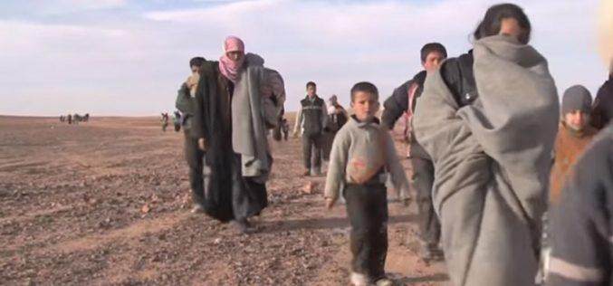 Кардинал Зенари за состојбата во Сирија