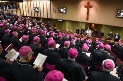 Папата: Сиромаштвото е мајка и бедем на посветениот живот
