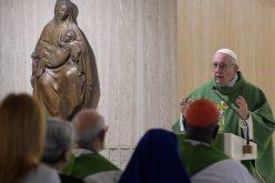 """Папата: Да кажеме """"не"""" на зависта која убива"""