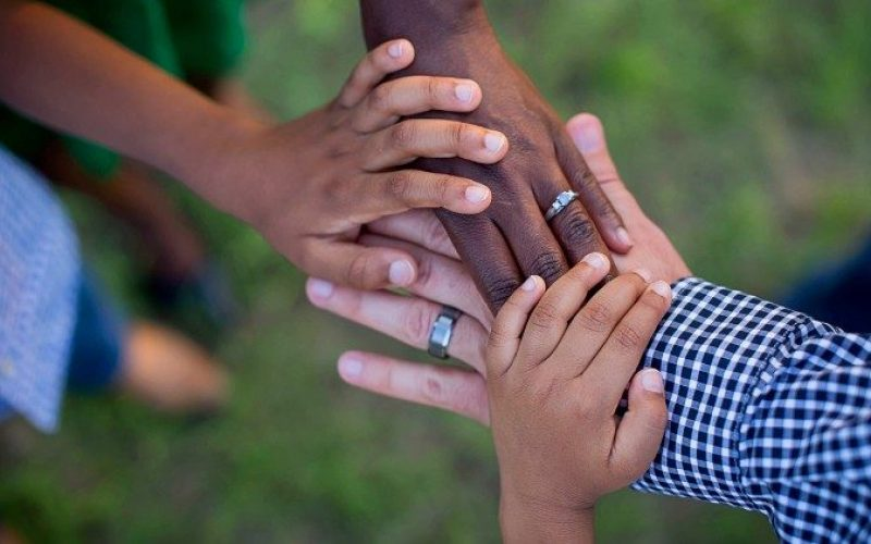 Во малите и во големите одлуки семејството може да пружи многу силни сведоштва