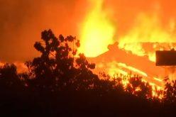 Папата испрати телеграма со сочувство за жртвите од пожарите во Грција