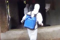 """""""Лекари без граници"""" за моменталната состојба на епидемија од ебола во ДР Конго"""