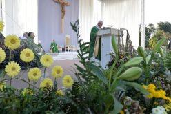 Папата: Мора да бидеме Црква која излегува и која се троши за најмалите