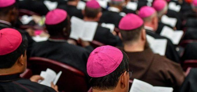 Ватикан: Започна Епископската синода за млади