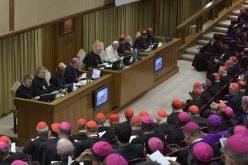 Папата: Синодата треба да даде конкретни пасторални предлози