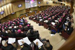 Црквата треба да им помогне на младите да ги остварат нивните соништа