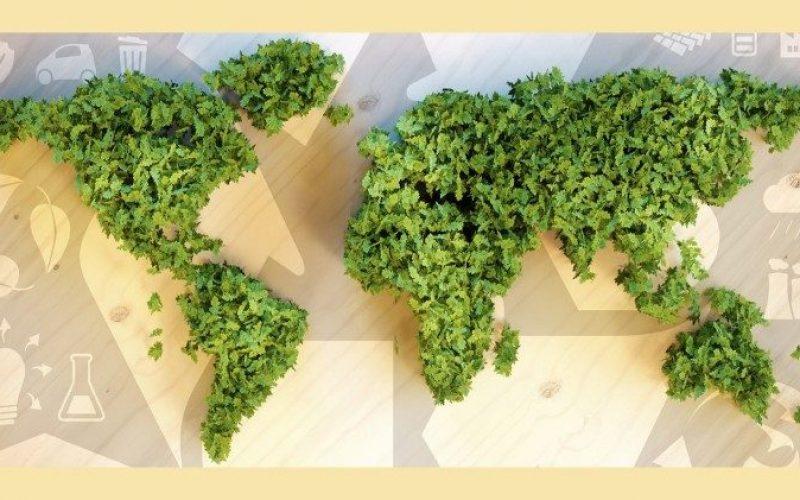 Папата: Со Земјата треба да постапуваме нежно