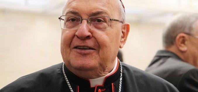 Кардинал Сандри е Папски претставник на прославата во Египет