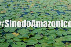 """""""Instrumentum laboris"""" за Епископската синода посветена на Амазонија"""