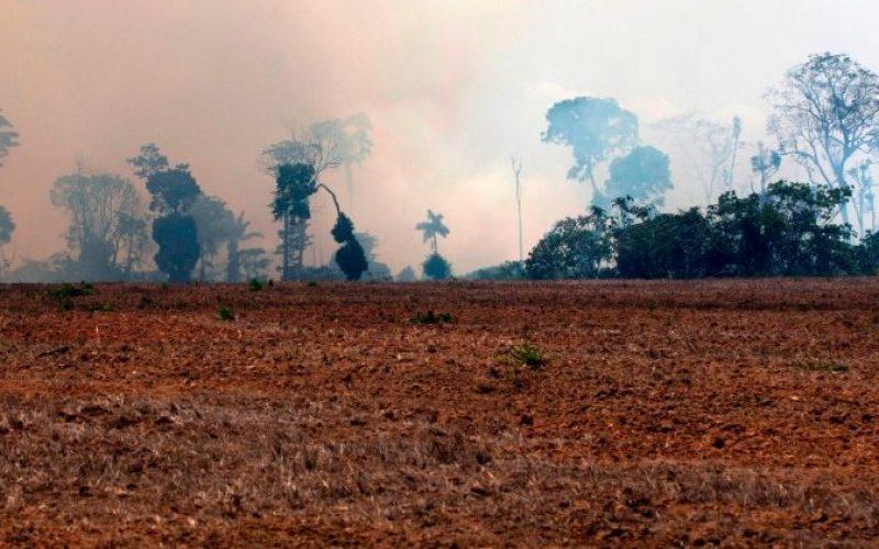 Папата повика на молитва за пожарите во Амазон