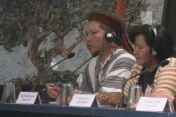 Домородните народи имаат голема надеж од Синодата за Амазонија