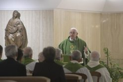 Папа Фрањо: Да се одбие Господовата бесплатност е грев на сите нас