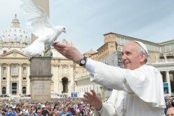 Објавена пораката на папата Фрањо за 53. Светски ден на мирот