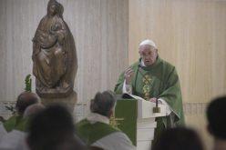 Папата: Да се има власт не значи да се заповеда, туку да се биде доследен и да се сведочи