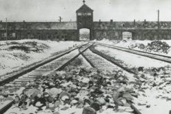 Меѓународен ден за сеќавање на жртвите на холокаустот