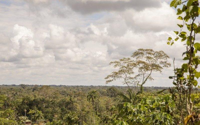Колумбија: Бискупите сакаат да ја зголемат свеста за грижата за создаденото