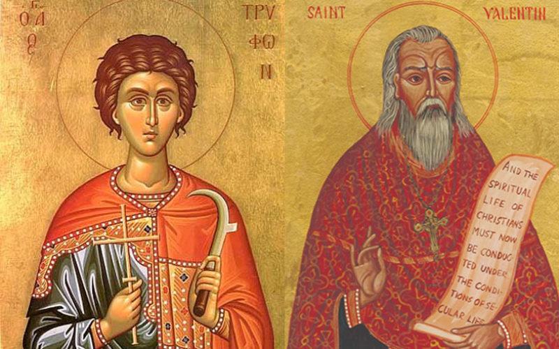 Свети Трифун или свети Валентин?
