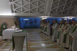 Папата: Да се биде христијанин значи да се прифати Исусовиот пат сè до крстот