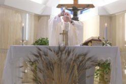 Папата: Радоста која нè исполнува е плод на Светиот Дух