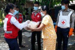 Ден на Црвениот крст за здравствените работници во борба против пандемијата