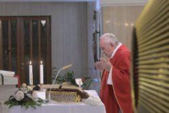 Папата се молеше за учениците, студентите, наставниците и професорите кои мора да најдат нов начин за поучување