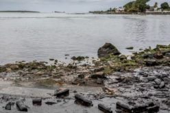 Маурициус: Кардинал Пијат повика на будење на еколошката свест