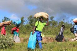 Солидарност на папата Фрањо со населението во Замбија кое гладува