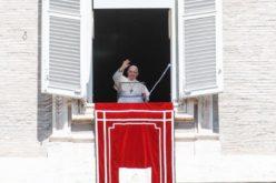Папата: Да ги носиме своите животни приказни пред Бог за да ја допреме Неговата нежност