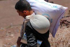 Папата Фрањо до ФАО: Срамота е за човечкиот род да умираат луѓе од глад