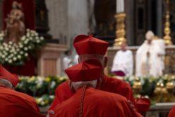 Изненадување и нова одговорност се првите зборови на новите кардинали