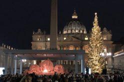 Божиќната елка на плоштадот Свети Петар во Ватикан оваа година е подарок од Словенија