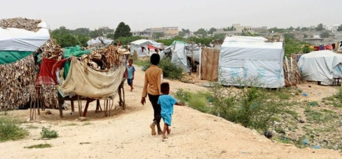 Апел на Папата за населението во Јемен