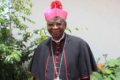 Епископите на Гана ќе посадат милион стебла