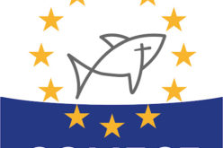 Црквата во Европа бара гарантирање на верската слобода