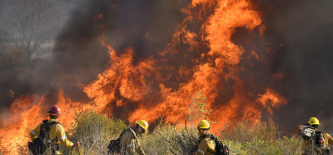 Бискупот Марсијанте: Подметнувањето пожар е грев против Создателот